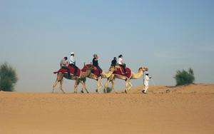 Thumbnail for Desert Fun in Abu Dhabi