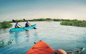 Thumbnail for Take a Kayak through Abu Dhabi's Eastern Mangroves