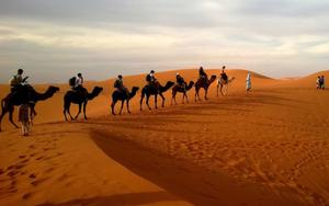 Thumbnail for Abu Dhabi's Exciting Telal Resort Desert Safari